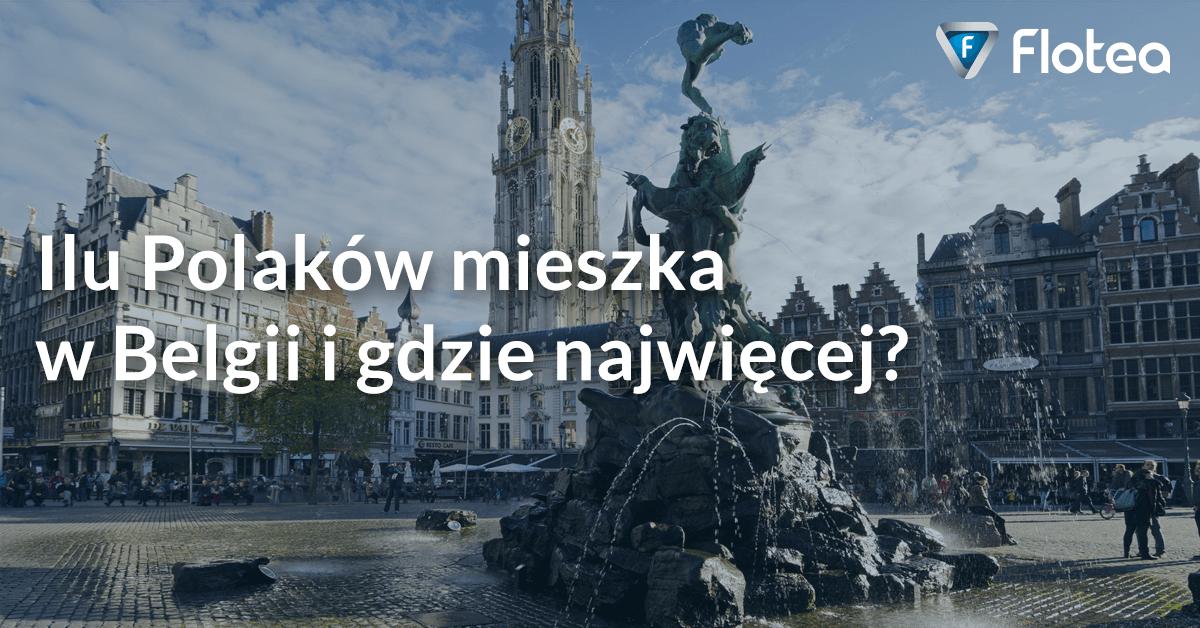 Ile Polaków mieszka w Belgii i gdzie najwięcej?