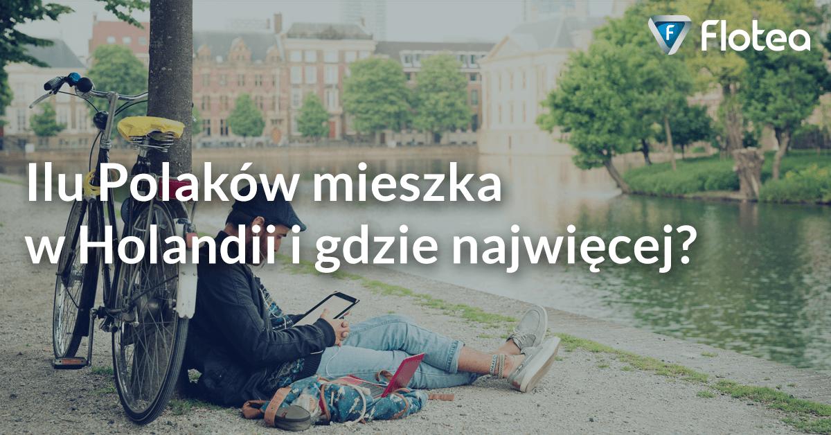 Ilu Polaków mieszka w Holandii i gdzie najwięcej?